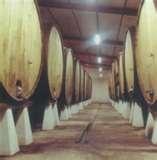 004 – La fermentación más rápida, se realiza a temperaturas...  (A) – Bajas  (B) – Medias  (C) – Altas