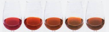El color del vino en envejecimiento