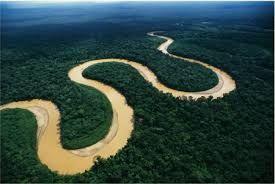 26 - El río Madre de Dios, que es enorme y se enrosca y alarga como una gigantesca boa. Al regreso todos están en silencio, cada uno está saboreando su fascinación…