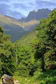 23 - De pronto distinguimos un inmenso manto verde de selva tropical, hasta el infinito, era el valle de Kosñipata.