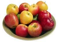 09 - Aclarado este malentendido daremos por bueno el concepto de que la sidra es un vino de manzanas, aunque también era muy frecuente hacerla de peras.